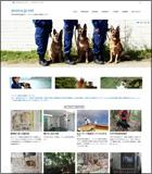 ジャパン使役犬活動センター